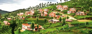 Top 10 summer travel destinations in India!