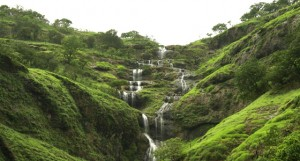 coorg-weekend-tour3