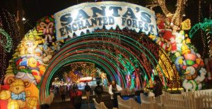 Miami-Hotel-Near-Santas-Enchanted-Forest